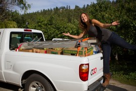 Okanagan Fruit Tree Project wants to share the fall harvest
